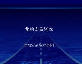 龙柏宏易资本集团