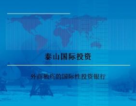 泰山国际投资