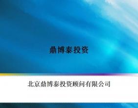 鼎博泰投资